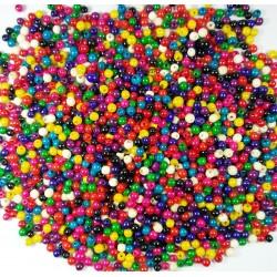 semilla achira multicolor 1